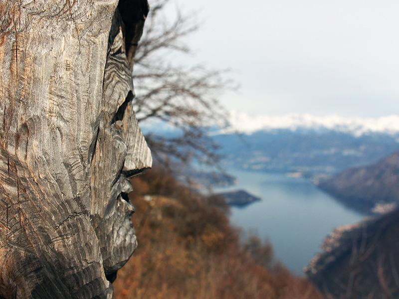 boschi incantati lombardia