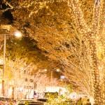 清武町イルミネーション2017!期間と見どころは?