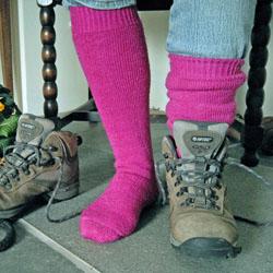 Explorer socks