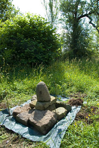 Lucy cairn