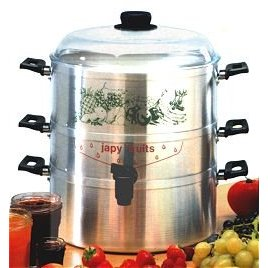 Steam juice extractor