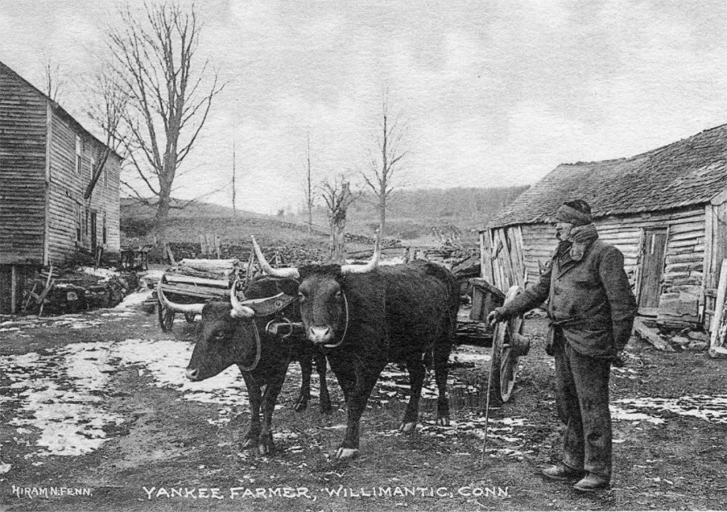 Yankee Farmer