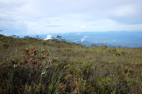 Some of the stunning views en route to the water point for the day (Amanda's pictures)