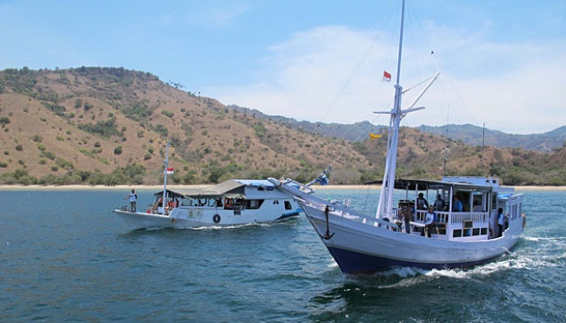 Komodo Island Create Shark, Manta Ray Sanctuary
