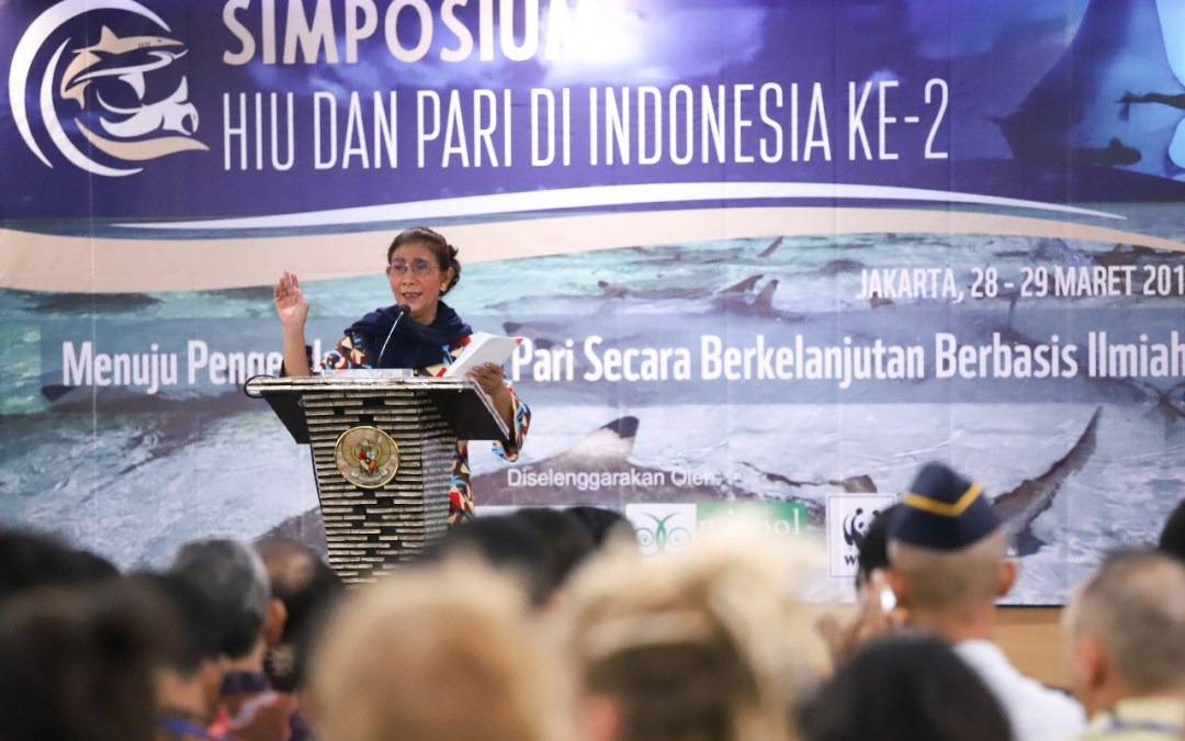 Indonesia builds momentum for shark and ray conservation