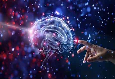 الدماغ البشري والوعي