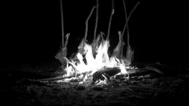 أهمية اكتشاف النار