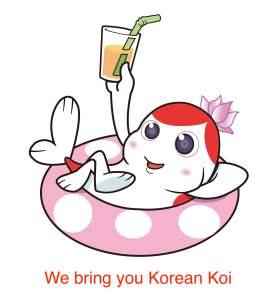 We bring you Koi