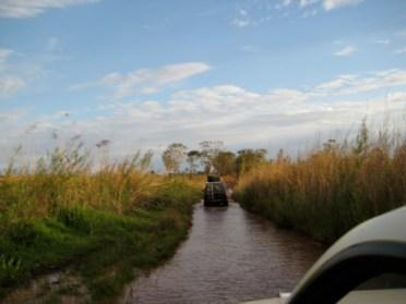 Central Madagascar 5