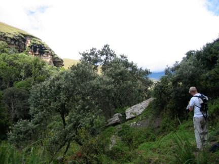 Drakensburg 12