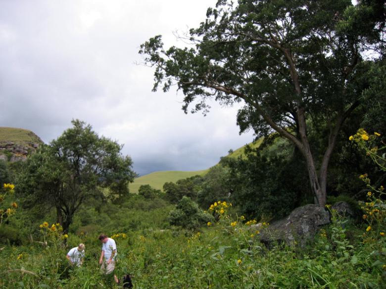 Drakensburg 14