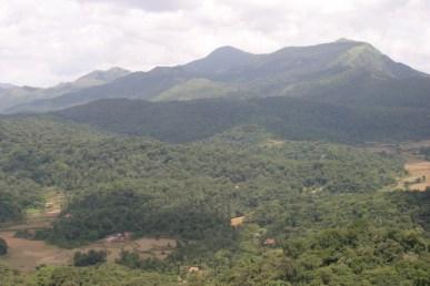Tali Cauvery 4