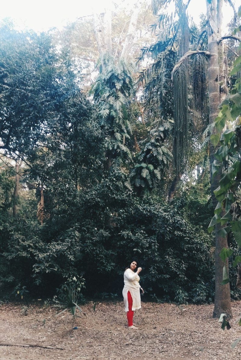 Girl exploring the forest - greenery - woods - self love