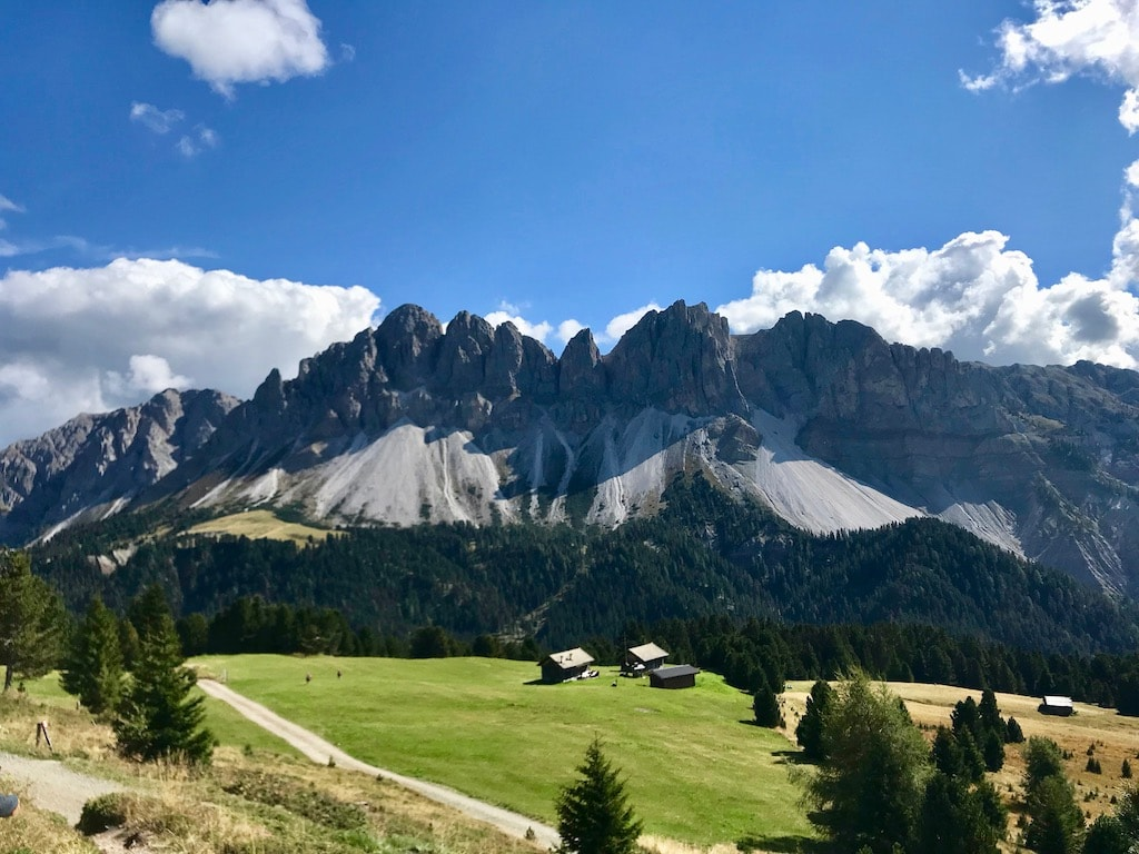 mantrailing-quality-Südtirol
