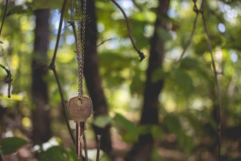 colgado de una rama un colgante con una llave