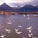 Vista do porto de Ushuaia, Terra do Fogo, Argentina