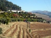 Douro, Portugal área vinicola