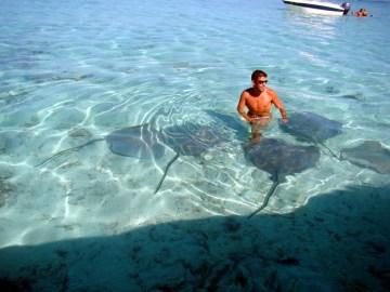 Mergulho no meio de arraias, Tahiti, Polinésia Francesa