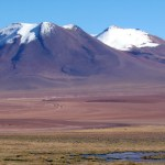 Altiplano chileno no Atacama