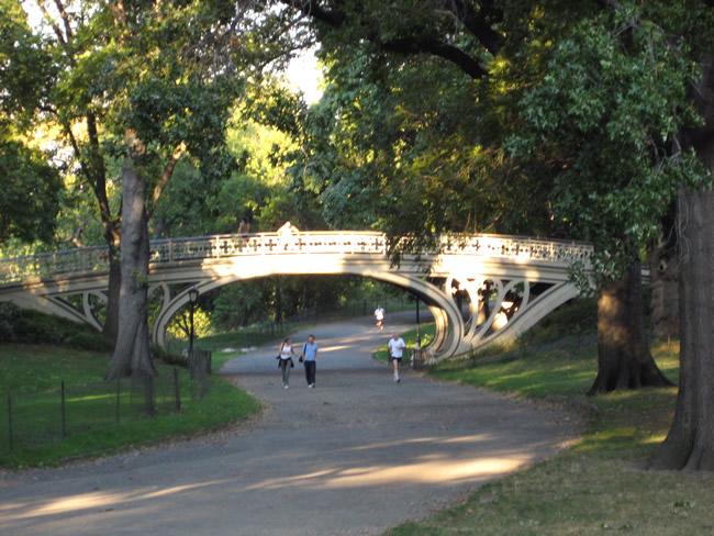 Central Park, o principal parque de New York