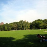 Great Lawn, Central Park, New York, foto Barão