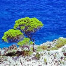 Litoral da Puglia