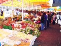 Mercado Fluvial de Valdivia
