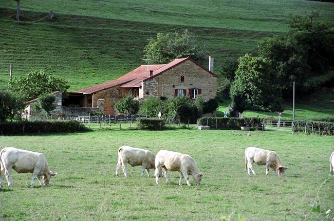 Paisagem rural na Borgonha, França