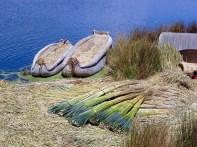 Totora, usada para construir casa e barcos no Titicaca