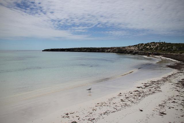Abrolhos, na Bahia