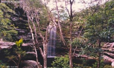 Cachoeira do Palmital, Chapada Diamantina