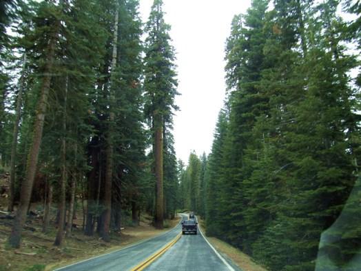 Yosemite National Park-California-_