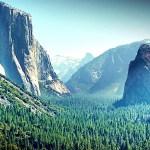 California-_Gloomy-as-a-bear-ccby