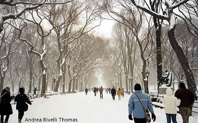 Central Park, Manhattan, New York, inverno