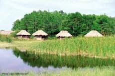 Everglades National Park, Flórida, USA