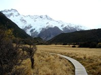 Monte Cook, South Island, New Zealand