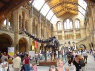 National History Museum, Londres