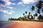 Praia do Forte, Bahia, bela e badalada