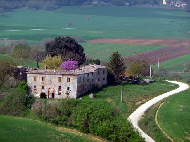 Estrada rural na Toscana, Itália