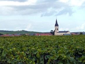 Igreja no meio de vinhedos, Champagne, França