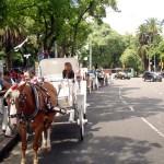 Parque em Palermo, Buenos Aires, Argentina
