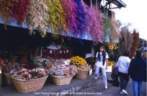 Quiosque de flores, Buenos Aires, Argentina