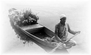 Vendedor de flores, na Caxemira, Índia