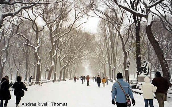 Central Park no inverno, em Manhattan, New York