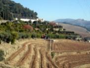 Douro Portugal, vinícolas