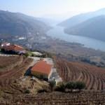 Douro, região vinícola portuguesa