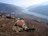 Rio Douro, região vinícola