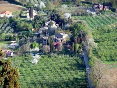 Toscana, Itália, vinhedos
