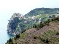Vinhedos em terraço, Cinque Terra, Itália