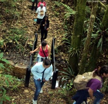 Trilha nas cercanias de São Luiz do Paraitinga, SP